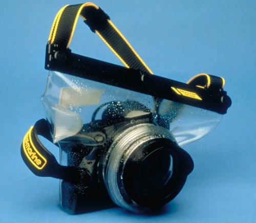 Live Underwater Marine Cameras - 3