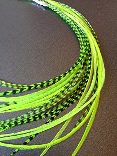 10 Hair Feathers and Beads, 100% Real Rooster Feather Hair Extensions, Long Grizzly, Neon Green, GREEN.