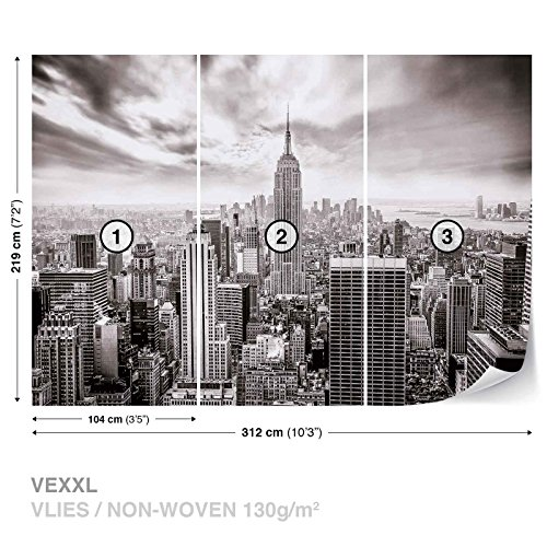 City Skyline Empire State New York Wall Mural Photo Wallpaper Room Décor (2318WS)