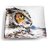 Big Sky Carvers Owl Snack Plate