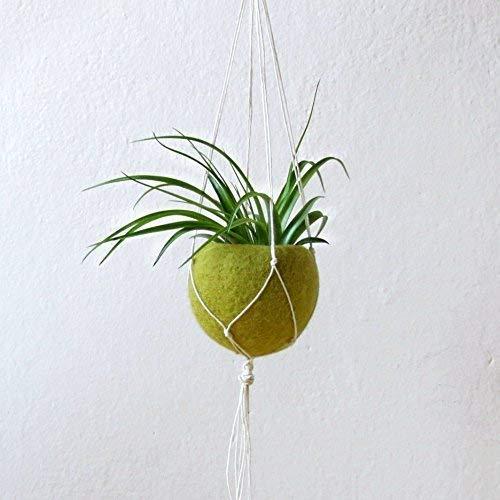 - Modern hanging planter/Macrame plant hanger/air planter gift/air plant holder/Succulent planter/Olive green Felt planter
