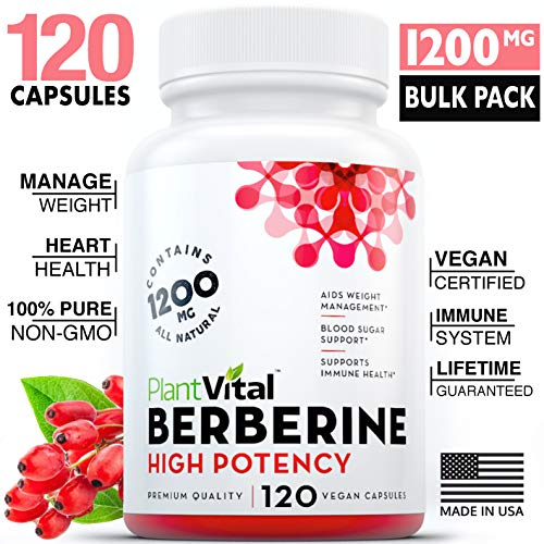 New! Berberine 1200mg Supplement [HIGH Potency]. 100% Pure, Aids Weight Loss, Boosts Immune System, Blood Sugar Stabilizer, Glucose Metabolism & Cardiovascular Health. Vegan, Non-GMO, 120 Bulk Pack.