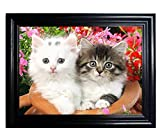 KITTENS FRAMED Wall Art-Lenticular Technology Causes The Artwork To Flip-MULTIPLE PICTURES IN ONE-HOLOGRAM Type Images Change--MESMERIZING HOLOGRAPHIC Optical Illusions By THOSE FLIPPING PICTURES