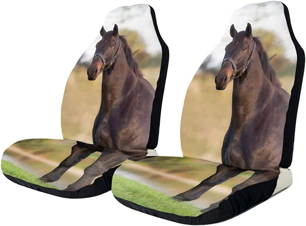 Sobre-mesa Horses Fall Front Seat Cover 1Pc Universal Fit