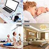 RIOWAY Humidifier, 240ml Cool Mist Aroma Ultrasonic Humidifiers Portable for Babies Bedroom Home Office Travel, Air Aromatherapy Car Diffuser with 7 Color LED