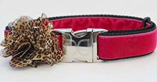 product image for Diva-Dog 'Pamela' Velvet Custom Engraved Dog Collar