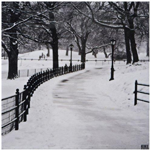 3dRose CST_10293_3 Snow Blizzard in Central Park Manhattan New York City-Ceramic Tile Coasters, Set of 4