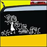 stick figure decals - Crazy Cat Lady Stick Figure Family Decal can be applied to any surface Funny Vinyl Decal Sticker White In Color No Inks 100% Vinyl 8.5