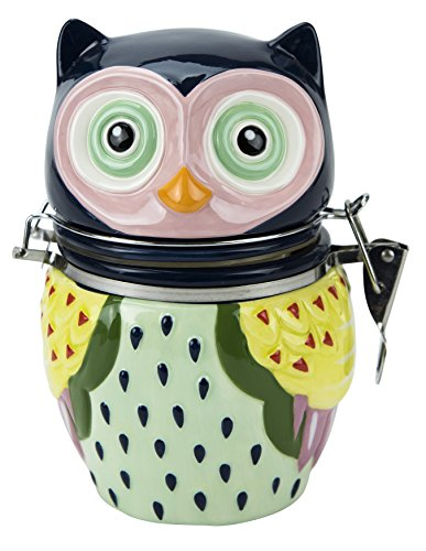 Hinged Jar, Artsy Owl Collection, Hand-painted Earthenware Storage Container by Boston Warehouse