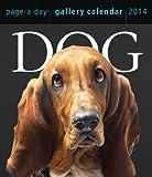 Dog 2014 Gallery Calendar