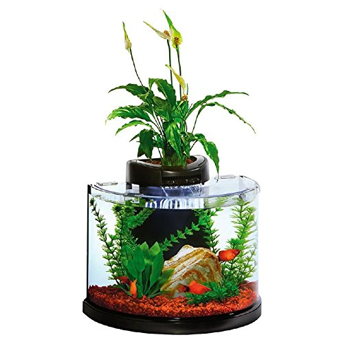 Elive AquaDuo 3 Gallon Betta Aquarium Fish Tank Kit, LED Lighting, Aquaponic and Power Filter, Cartridges and Hydrocorn Included by Elive