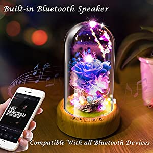 Forever Blue Rose Bedside Lamp Bluetooth Speaker, Enchanted Preserved Rose LED Night Light Music Player in Glass Dome for Mother's Day, Women, Her, Anniversary gift or decor.