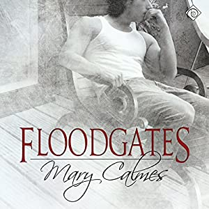 Floodgates | Livre audio