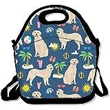 Best Picnic Plus Lunch Boxes - HOOAL Golden Retriever Beach Travel Picnic Lunch Bag Review