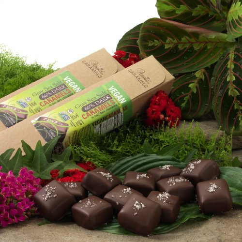 Organic Vegan Gray Salt Caramels in 72% Dark Chocolate, 16.8 ounces (6 packs - 6 pcs/pack) by Amella
