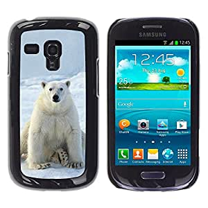 Qstar Arte & diseño plástico duro Fundas Cover Cubre Hard Case Cover para Samsung Galaxy S3 III MINI (NOT REGULAR!) / I8190 / I8190N ( Polar Bear Snow White Ice Arctic Animal)