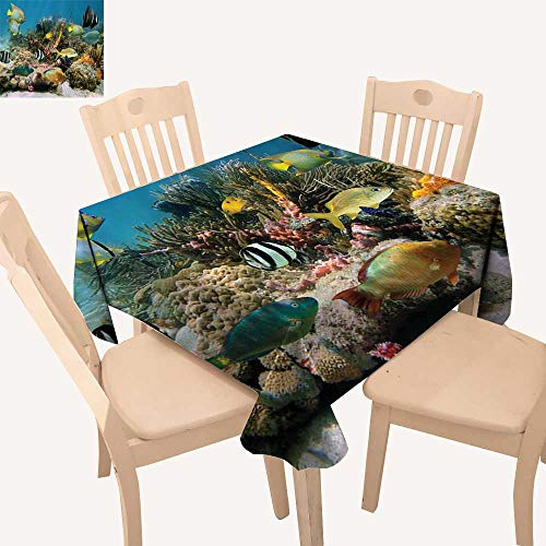 haommhome Ocean Wrinkle Free Tablecloths Colorful Coral Colony on Reef Beautiful Shoal of Tropical Fish Caribbean Sea Picture Square Tablecloth W 60