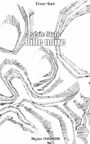 Bille Noire: Série Stylo (French Edition)