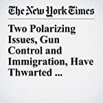 Two Polarizing Issues, Gun Control and Immigration, Have Thwarted Compromise | Carl Hulse
