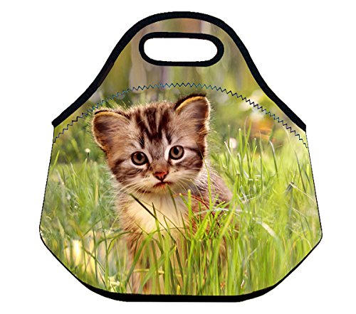 Niyatree Neoprene Lunch Bag Insulated Lunch Tote Handbag with Zipper - Grass (Grass Purse)