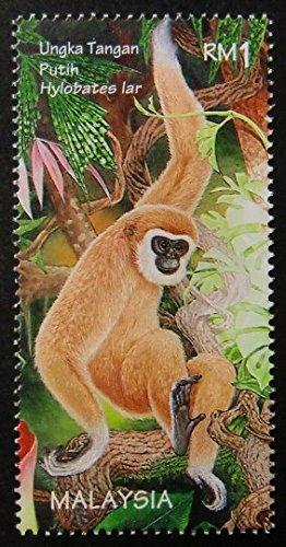 Hylobates lar Malaysia -Framed Postage Stamp Art 11614