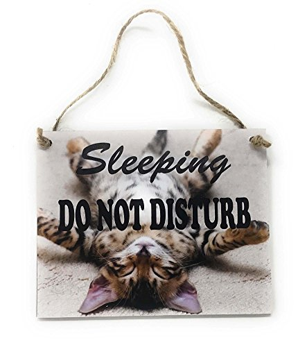 tiggersmall Sleeping Do Not Disturb with Sleeping Cat Kitten 4