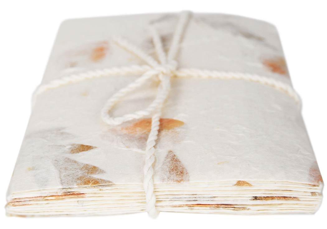 22cm x 12cm Paquet de 6 Ensemble d/écriture Enveloppe Eco-petal Dl Standard et Papier Lettre M/élange de Fleurs