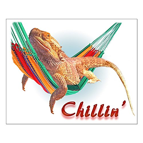 CafePress - Bearded Dragon Chillin - 16