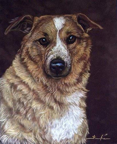 11 x 14 Pet Portrait Custom Dog Artwork by Frankie Paquin -