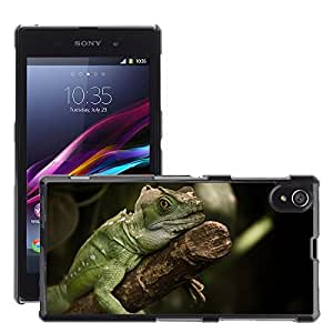 Etui Housse Coque de Protection Cover Rigide pour // M00134744 Iguana Lagarto Reptil Animal // Sony Xperia Z1 L39 C6903 C6906 C6943 C6902