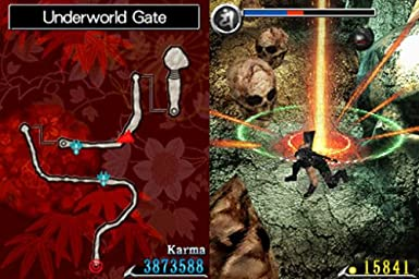 Ninja Gaiden: Dragon Sword [Importación alemana]: Amazon.es ...