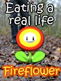 Eating a real life fireflower!
