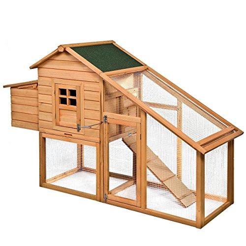 Hpd deluxe chicken coop backyard chicken coop plans for Backyard chicken coop plans