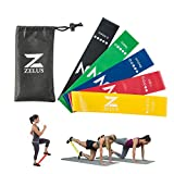 ZELUS Exercise Resistance Loop Bands – Set of 5 – Exercise Workout Bands for Daily Workout, Pilates, Yoga, Rehab & Physical Therapy with Carry Bag