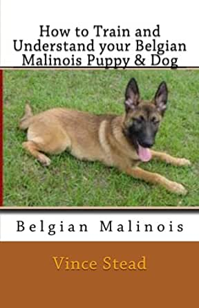 Belgian Malinois Diets Matter: Dog Food Recipe, Blank Recipe Cookbook, 7 x 10, 100 Blank Recipe Pages