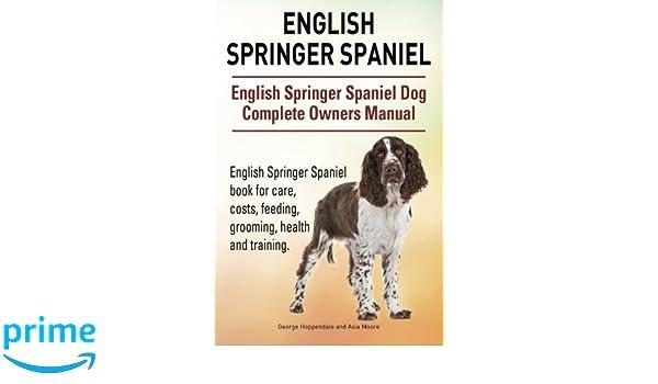 English Springer Spaniel English Springer Spaniel Dog Complete