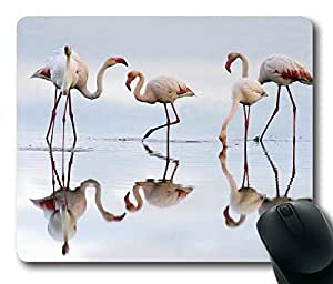 Greater Flamingos Birds Animals Masterpiece Limited Design Oblong Mouse Pad by Cases & Mousepads by mcsharks