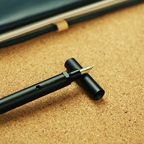 ion Fountain Pen, Black, Fine Nib, Schmidt Gold-plated Nib and Converter ()