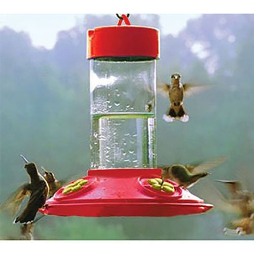(Songbird Essentials Dr JB's 16 oz Clean Feeder All Red Feeder w/ Yellow Flowers )