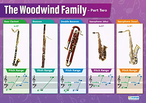 Woodwind Instruments (2) | Music Posters | Gloss Paper Measuring 33
