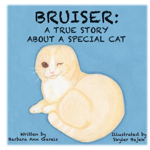 Bruiser: A True Story About a Special Cat