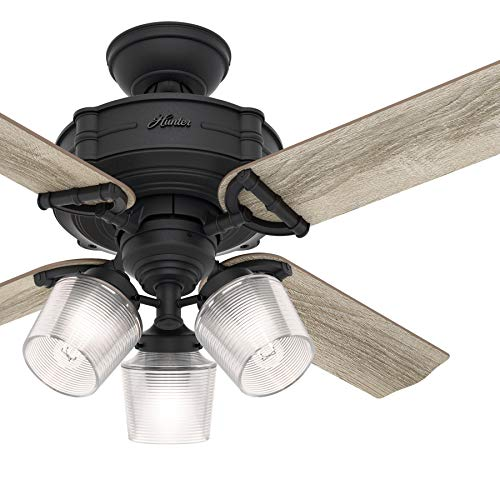 Hunter Fan 44 inch Traditional Natural Iron Ceiling Fan with Light Kit and Remote Control ()