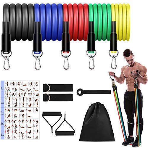 Mokani Resistance Bands Set (11pcs), Exercise Bands with Door Anchor & Handles, Home Gym Equipment Men Women Legs Ankle for Resistance Training,Home Workouts,Fitness