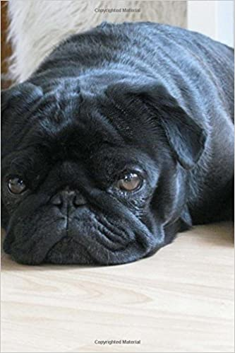 Precious Black Pug Dog Journal 150 Page Lined Notebookdiary Cs