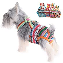 2 x Sundlight Colorful Pet Underwear Diapers Dog Cotton Tighten Strap Physiological Sanitary Pants, Reusable and Washable (Size XS)
