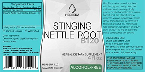Stinging Nettle Root Alcohol-Free Herbal Extract Tincture, Super-Concentrated Organic (Urtica Dioica) (2x4 fl oz) by HerbEra (Image #1)