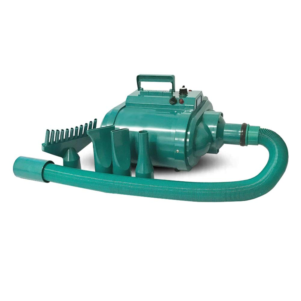 GREEN A GREEN A Ryan Dog Dryer, Pet Grooming Hairdryer Stepless Speed Low Noise Blower Heater With Hose Professional Shower Beauty Adjustable Speed For All Animals (color   GREEN, Size   A)