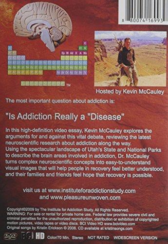is addiction a disease essay