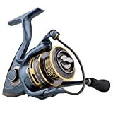 Best Spinning Reels - Pflueger PRESSP40X President Spinning Fishing Reel Review