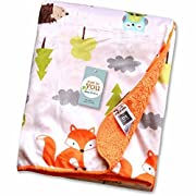 R&E Services Fleece Baby Blanket, Perfect for Swaddling, 30 x40 , Milestone Blanket